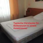 Bettwanzen im Hotelzimmer