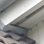 Marderabwehr und Marderabsicherung im Dach